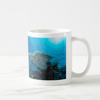 Plate Coral on the Great Barrier Reef Coffee Mug