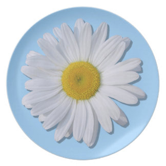 Plate - New Daisy on Blue