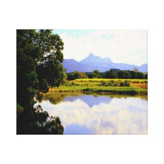 Platypus Country Stretched Canvas Prints