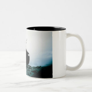 Platzi Two-Tone Mug