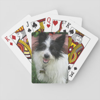 Play Cards with Mutts
