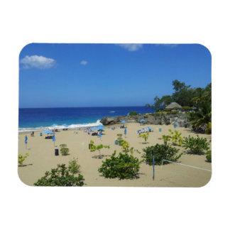 PLAYA ALCIA BEACH SOSUA DOMINICAN REPUBLIC SURF OC RECTANGULAR PHOTO MAGNET