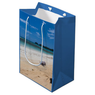 Playa Bonita Beach Dominican Republic Medium Gift Bag