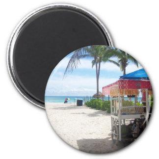 Playa Del Carmen Fridge Magnet