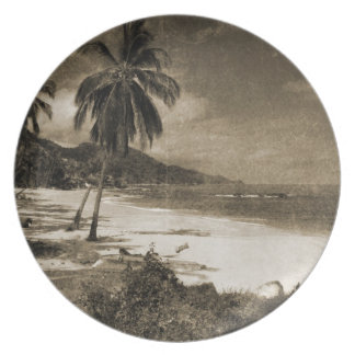 Playa Los Caballos Antique Dinner Plate