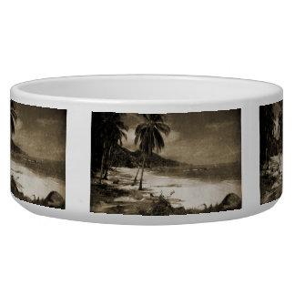 Playa Los Caballos Antique Pet Water Bowls