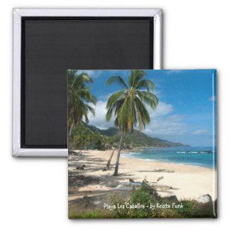 Playa Los Caballos Blue Refrigerator Magnets