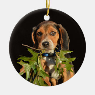 Playful Beagle Puppy With Leaves Round Ceramic Decoration