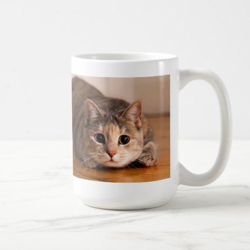 Playful Cat Mug