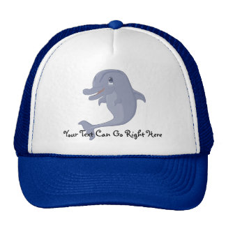 Playful Dolphin Hat