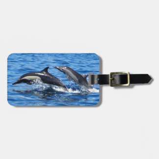 Playful Dolphins Luggage Tag