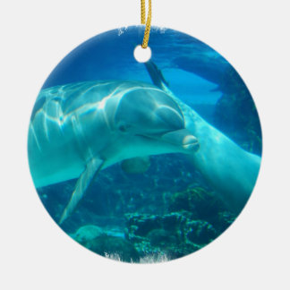 Playful Dolphins Ornaments