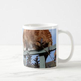 Playful Ginger Cat Basic White Mug