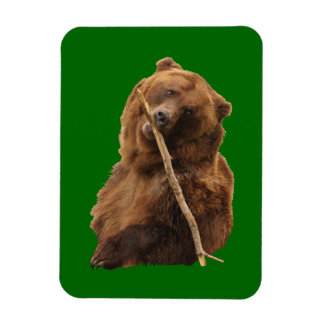 playful grizzly bear with stick rectangle magnet