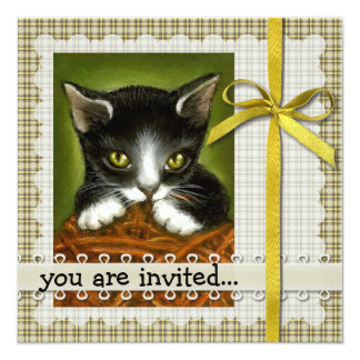 "Playful kitten invitations 5.25"" square invitation card"