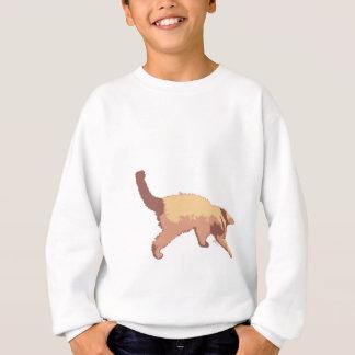 Playful kitten sweatshirt