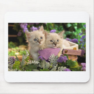 Playful Kittens Peep Out Of A Picnic Basket Mouse Pad