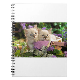 Playful Kittens Peep Out Of A Picnic Basket Spiral Notebooks