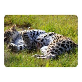 Playful Leopard 13 Cm X 18 Cm Invitation Card