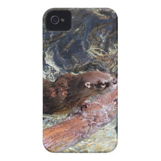 Playful Otter iPhone 4 Cases
