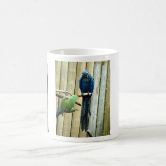 Playful Parrots Basic White Mug