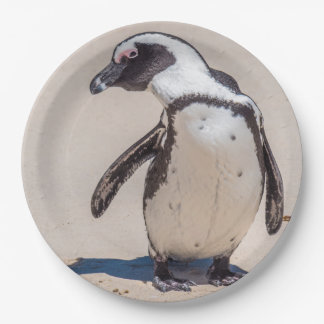 Playful Penguin Paper Plates 9 Inch Paper Plate