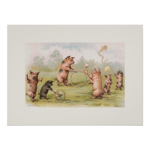 Playful Pigs Poster