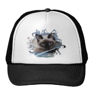 Playful Siamese Cap