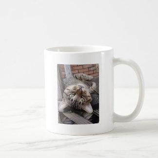 Playful Striped Feral Tabby Cat Basic White Mug