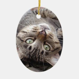 Playful Striped Feral Tabby Cat Ceramic Oval Decoration