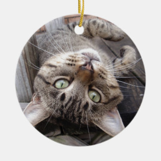 Playful Striped Feral Tabby Cat Round Ceramic Decoration