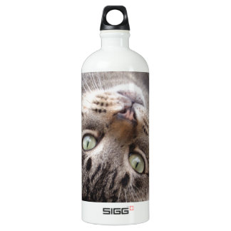 Playful Striped Feral Tabby Cat SIGG Traveller 1.0L Water Bottle