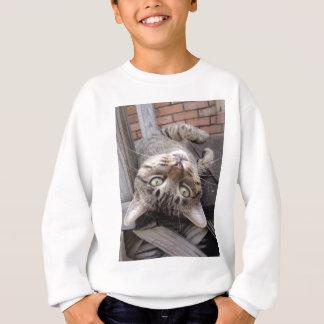 Playful Striped Feral Tabby Cat Sweatshirt
