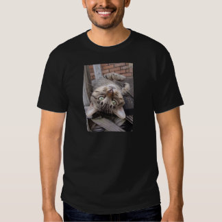 Playful Striped Feral Tabby Cat Tee Shirts