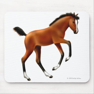 Playful Thoroughbred Foal Mousepad