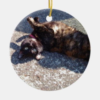 Playful Tortoiseshell Cat Round Ceramic Decoration