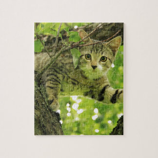 Playful Wild Cat Climbing Tree Jigsaw Puzzle
