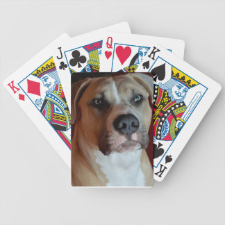Playing card's card deck