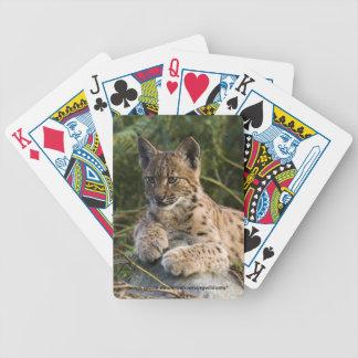 Playing cards - Carpathian lynx
