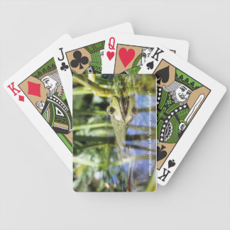 Playing cards - marsh frog