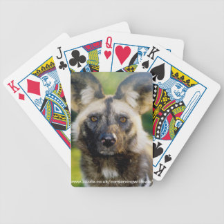 Playing cards - painted dog