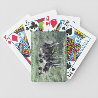 Playing cards - painted dog2
