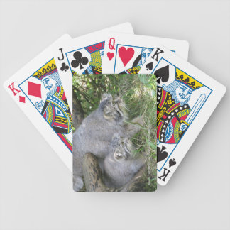 Playing cards - pallas cat