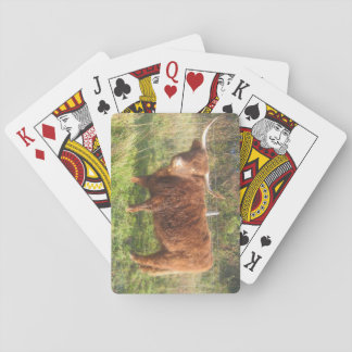 Playing Cards With Highland Cow Picture