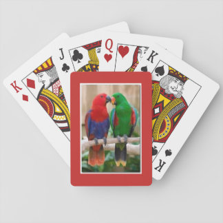 Playing deck of cards with a pair of parrots