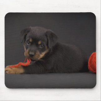 Playing Puppy 5 Mouse Pad
