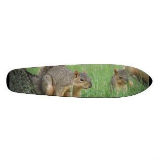 Playing Squirrels Skateboard Deck