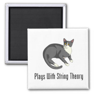 Plays With String Theory Fridge Magnets