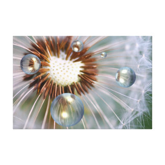 Plaything with dandelion canvas print