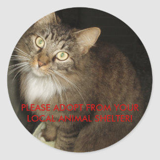 PLEASE ADOPT FROM YOUR LOCAL ANIMAL SHELTER! CLASSIC ROUND STICKER